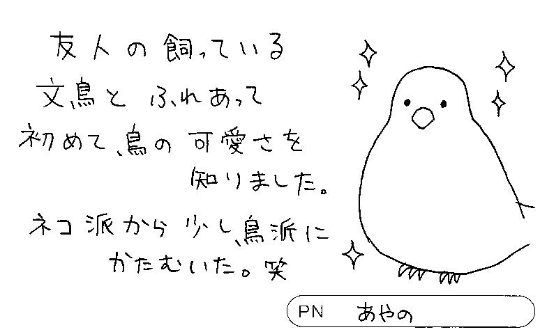 20180406183603-0007